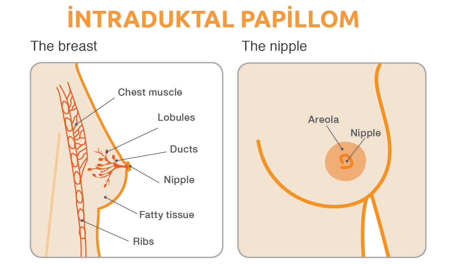 papilomavirus uman pe față paraziți la om simptome cdc
